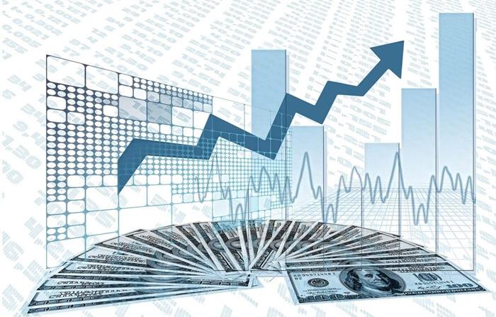 ¿Qué es una proporción de pago de dividendos?